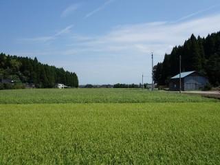 20130818(3)舞谷にて子ども大会!3